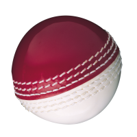 Gunn & Moore Junior Skills Ball - Red/White