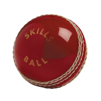 Gunn & Moore Junior Skills Ball - Red