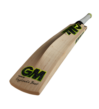 Gunn & Moore Zelos 808 Cricket Bat – White/Green