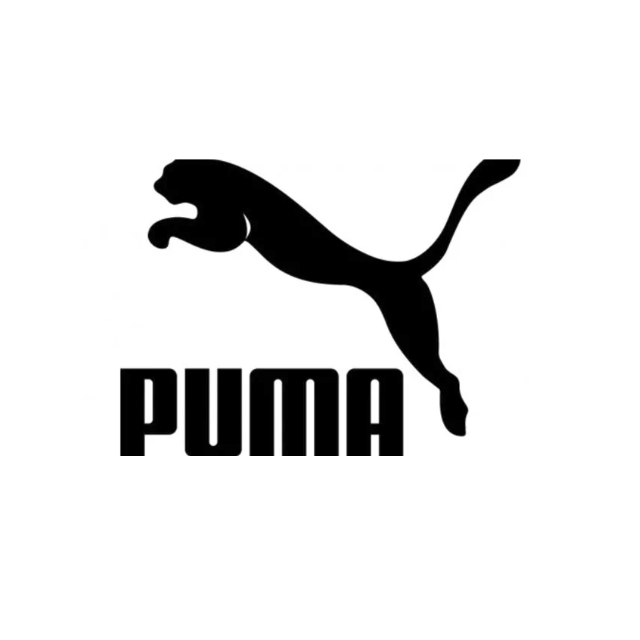 Puma Cricket Shoes
