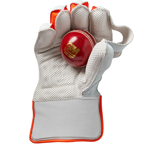 Senior Wicket Keeping Gloves